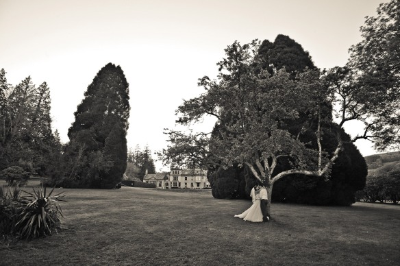 GRW Photography-Holne-Park-House-wedding-photography_50