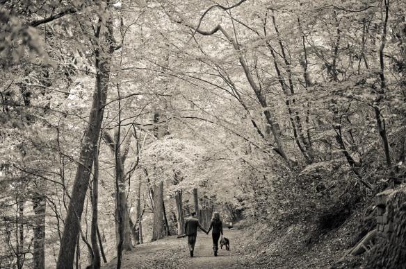 GRW Photography-Mount Edgcumbe-engagement-photography (15)